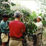 ハワイ島で過ごしたコーヒー農園を思ふ