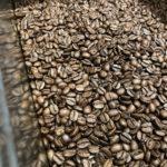 カフェラテに合うコーヒー豆をお探しですか?