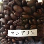 大小どっち!コーヒー豆の大きさは味を左右するのか