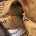 コーヒーは新豆の時期が一番美味しいの?