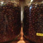 こんな事でもコーヒーの味わいが変わるんです!コーヒーの精製について