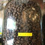 タンザニア・コーヒーの魅力