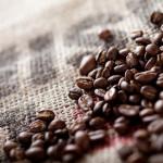コーヒー豆はぱくぱく食べられるのか?