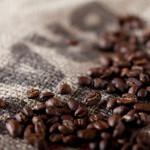 知ってますか?焙煎したてのコーヒー豆は100%の力でないことを