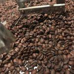 コーヒー豆はバリボリ食べられるのか?