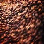 コーヒー豆の販売で、豆と粉 どっちで買っていく人が多いの?