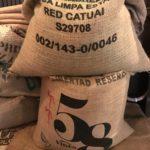 コーヒー豆に旬ってあるの?