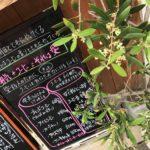 大阪・谷町4丁目に島珈琲のコーヒー豆が飲めるカフェができます!