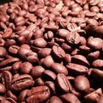コーヒーの香りはどの段階の時に一番香っているのか?